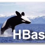 Курс Администрирование кластера HBase