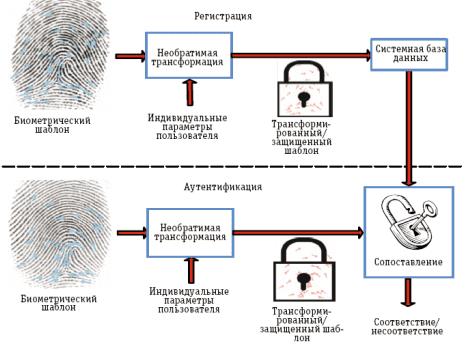 cybersecurity, защита биометрии