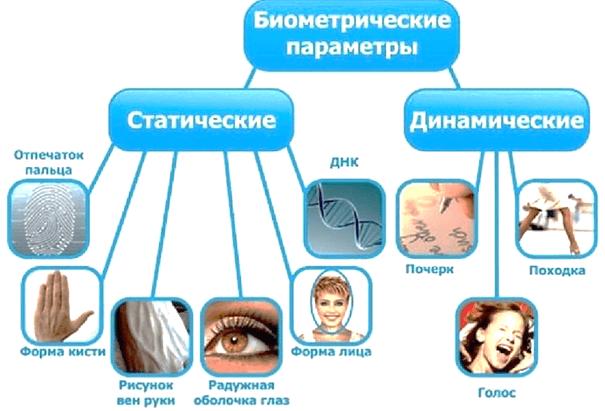 Биометрические методы